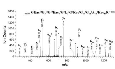 Spectrum of acylated histone H4 peptide